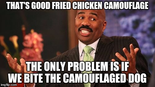Steve Harvey Meme | THAT'S GOOD FRIED CHICKEN CAMOUFLAGE THE ONLY PROBLEM IS IF WE BITE THE CAMOUFLAGED DOG | image tagged in memes,steve harvey | made w/ Imgflip meme maker