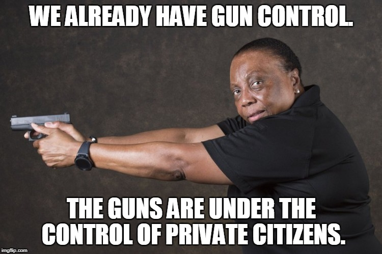 Don't worry! | WE ALREADY HAVE GUN CONTROL. THE GUNS ARE UNDER THE CONTROL OF PRIVATE CITIZENS. | image tagged in guns | made w/ Imgflip meme maker
