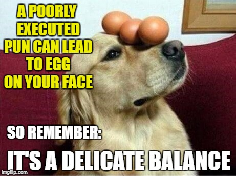 Egg on face balance pun | A POORLY EXECUTED PUN CAN LEAD TO EGG ON YOUR FACE IT'S A DELICATE BALANCE SO REMEMBER: | image tagged in doggo of balance | made w/ Imgflip meme maker