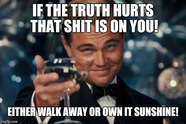 Truth   | IF THE TRUTH HURTS THAT SHIT IS ON YOU! EITHER WALK AWAY OR OWN IT SUNSHINE! | image tagged in memes,leonardo dicaprio cheers | made w/ Imgflip meme maker
