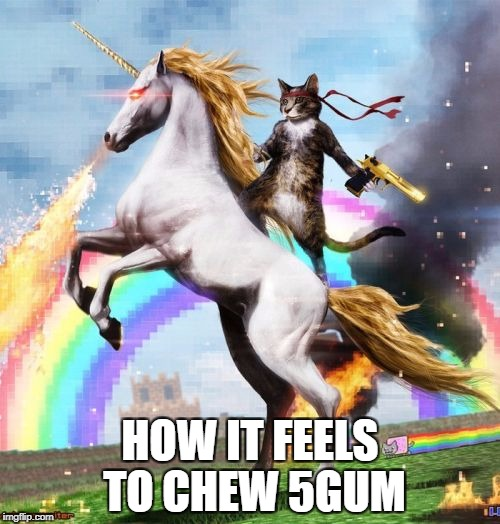 Welcome To The Internets | HOW IT FEELS TO CHEW 5GUM | image tagged in memes,welcome to the internets | made w/ Imgflip meme maker