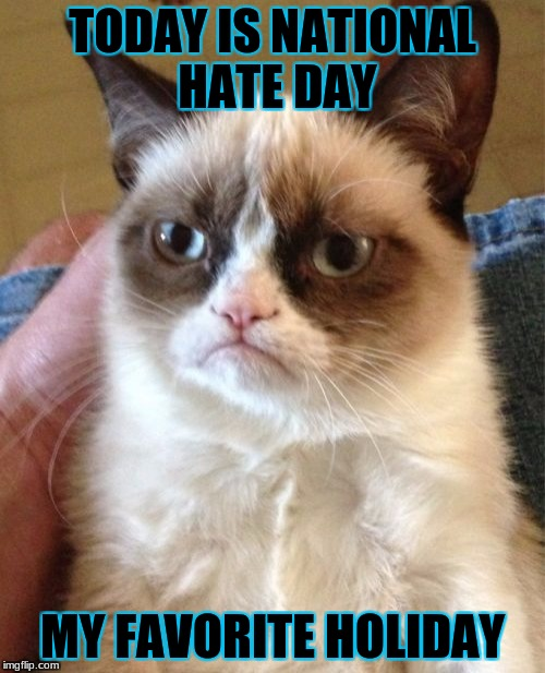 Grumpy Cat Meme | TODAY IS NATIONAL HATE DAY MY FAVORITE HOLIDAY | image tagged in memes,grumpy cat | made w/ Imgflip meme maker