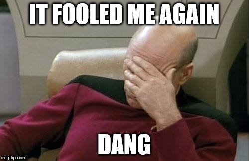 Captain Picard Facepalm Meme | IT FOOLED ME AGAIN DANG | image tagged in memes,captain picard facepalm | made w/ Imgflip meme maker