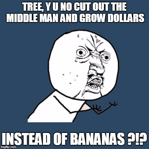Y U No Meme | TREE, Y U NO CUT OUT THE MIDDLE MAN AND GROW DOLLARS INSTEAD OF BANANAS ?!? | image tagged in memes,y u no | made w/ Imgflip meme maker