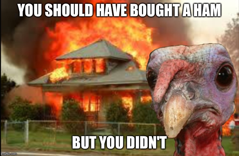 YOU SHOULD HAVE BOUGHT A HAM BUT YOU DIDN'T | image tagged in thanksgiving | made w/ Imgflip meme maker