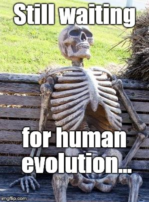 Waiting Skeleton Meme | Still waiting for human evolution... | image tagged in memes,waiting skeleton | made w/ Imgflip meme maker