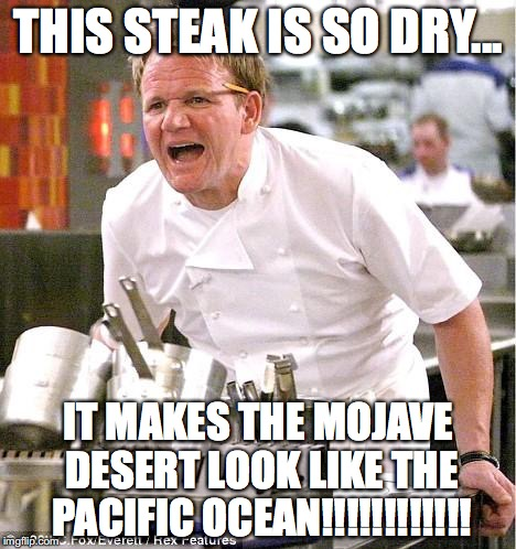 Chef Gordon Ramsay Meme | THIS STEAK IS SO DRY... IT MAKES THE MOJAVE DESERT LOOK LIKE THE PACIFIC OCEAN!!!!!!!!!!!! | image tagged in memes,chef gordon ramsay | made w/ Imgflip meme maker