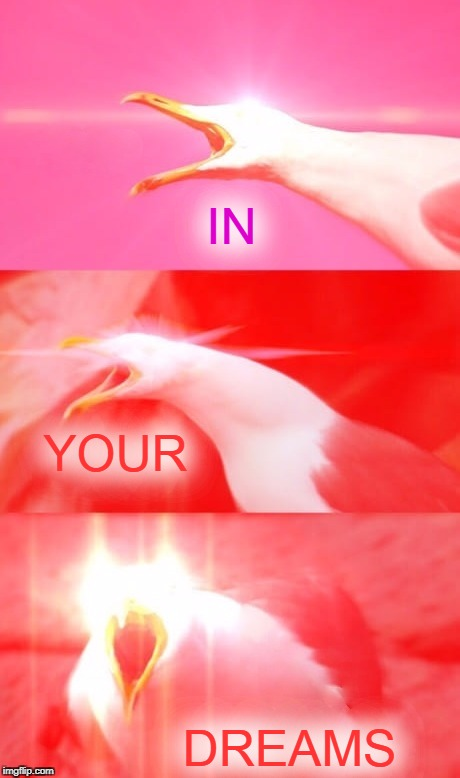 Inhaling Seagull Reply | IN DREAMS YOUR | image tagged in inhaling seagull reply | made w/ Imgflip meme maker