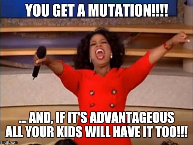Oprah You Get A Meme | YOU GET A MUTATION!!!! ... AND, IF IT'S ADVANTAGEOUS ALL YOUR KIDS WILL HAVE IT TOO!!! | image tagged in memes,oprah you get a | made w/ Imgflip meme maker