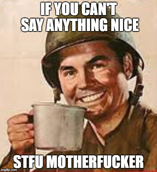 IF YOU CAN'T SAY ANYTHING NICE STFU MOTHERF**KER | image tagged in stfu | made w/ Imgflip meme maker