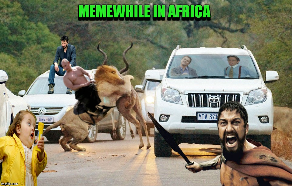 Go on safari they said... It's perfectly safe they said... | MEMEWHILE IN AFRICA MEMEWHILE IN AFRICA | image tagged in meanwhile on imgflip,memestrocity | made w/ Imgflip meme maker