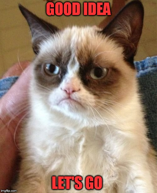Grumpy Cat Meme | GOOD IDEA LET'S GO | image tagged in memes,grumpy cat | made w/ Imgflip meme maker
