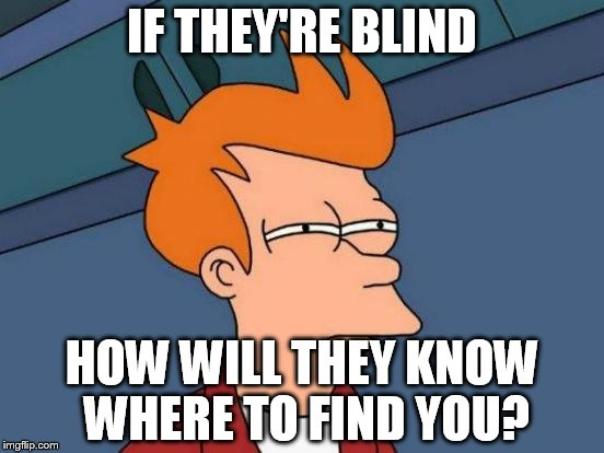 Futurama Fry Meme | IF THEY'RE BLIND HOW WILL THEY KNOW WHERE TO FIND YOU? | image tagged in memes,futurama fry | made w/ Imgflip meme maker