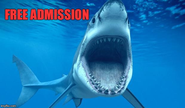 shark open mouth | FREE ADMISSION | image tagged in shark open mouth | made w/ Imgflip meme maker
