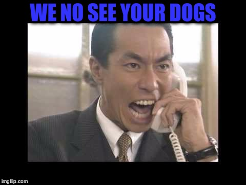 WE NO SEE YOUR DOGS | made w/ Imgflip meme maker
