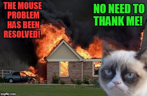What Mouse?!  | THE MOUSE PROBLEM HAS BEEN RESOLVED! NO NEED TO THANK ME! | image tagged in memes,burn kitty,grumpy cat | made w/ Imgflip meme maker