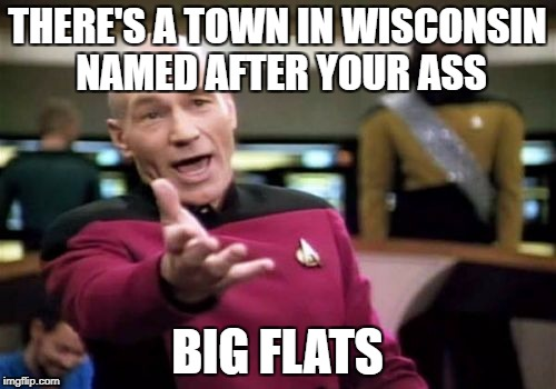 Picard Wtf Meme | THERE'S A TOWN IN WISCONSIN NAMED AFTER YOUR ASS BIG FLATS | image tagged in memes,picard wtf | made w/ Imgflip meme maker