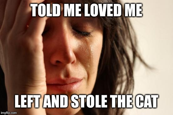 First World Problems Meme | TOLD ME LOVED ME LEFT AND STOLE THE CAT | image tagged in memes,first world problems | made w/ Imgflip meme maker