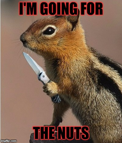 I'M GOING FOR THE NUTS | made w/ Imgflip meme maker