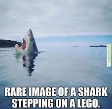 Ouch | image tagged in memes,stepping on a lego,sharks | made w/ Imgflip meme maker