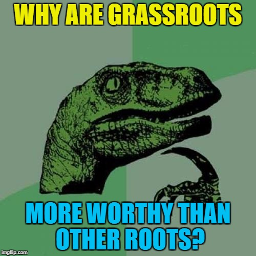 Tree roots grow into something far more substantial than grass... | WHY ARE GRASSROOTS MORE WORTHY THAN OTHER ROOTS? | image tagged in memes,philosoraptor,grassroots | made w/ Imgflip meme maker