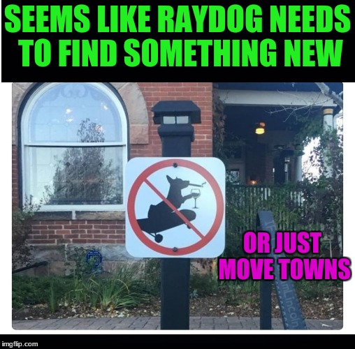 Signs these days... There is a reason why they make some like these | SEEMS LIKE RAYDOG NEEDS TO FIND SOMETHING NEW OR JUST MOVE TOWNS | image tagged in memes,raydog,government,funny signs | made w/ Imgflip meme maker