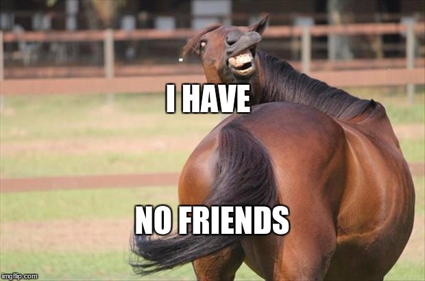 funny horse | I HAVE NO FRIENDS | image tagged in funny horse | made w/ Imgflip meme maker