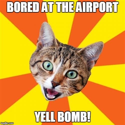 Bad Advice Cat | BORED AT THE AIRPORT YELL BOMB! | image tagged in memes,bad advice cat | made w/ Imgflip meme maker