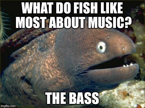 Bad Joke Eel Meme | WHAT DO FISH LIKE MOST ABOUT MUSIC? THE BASS | image tagged in memes,bad joke eel | made w/ Imgflip meme maker