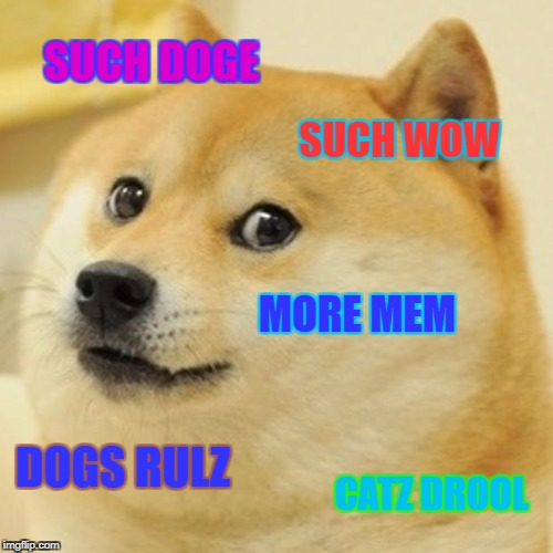 Doge Meme | SUCH DOGE SUCH WOW MORE MEM DOGS RULZ CATZ DROOL | image tagged in memes,doge | made w/ Imgflip meme maker