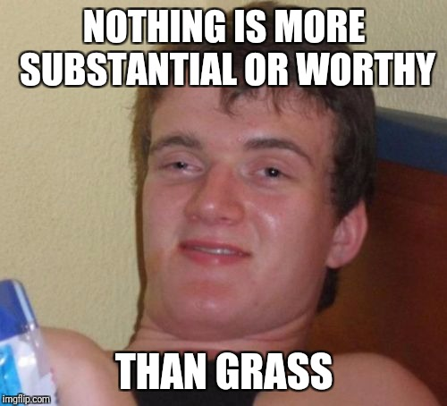 10 Guy Meme | NOTHING IS MORE SUBSTANTIAL OR WORTHY THAN GRASS | image tagged in memes,10 guy | made w/ Imgflip meme maker