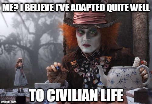 Harder for some than others | ME? I BELIEVE I'VE ADAPTED QUITE WELL TO CIVILIAN LIFE | image tagged in mad hatter,veterans | made w/ Imgflip meme maker