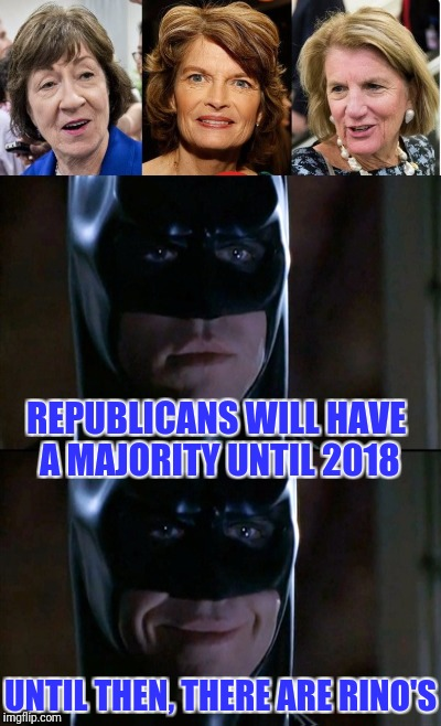 I LOVE RINO'S! | REPUBLICANS WILL HAVE A MAJORITY UNTIL 2018 UNTIL THEN, THERE ARE RINO'S | image tagged in batman smiles,rino,republican | made w/ Imgflip meme maker