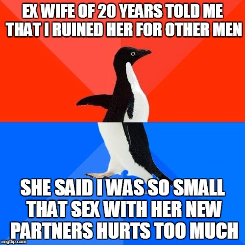 Socially awkward pinguin | EX WIFE OF 20 YEARS TOLD ME THAT I RUINED HER FOR OTHER MEN SHE SAID I WAS SO SMALL THAT SEX WITH HER NEW PARTNERS HURTS TOO MUCH | image tagged in socially awkward pinguin,AdviceAnimals | made w/ Imgflip meme maker