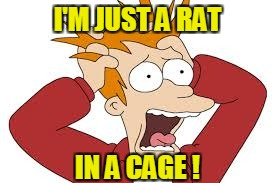 I'M JUST A RAT IN A CAGE ! | made w/ Imgflip meme maker