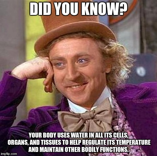 Creepy Condescending Wonka Meme | DID YOU KNOW? YOUR BODY USES WATER IN ALL ITS CELLS, ORGANS, AND TISSUES TO HELP REGULATE ITS TEMPERATURE AND MAINTAIN OTHER BODILY FUNCTION | image tagged in memes,creepy condescending wonka | made w/ Imgflip meme maker