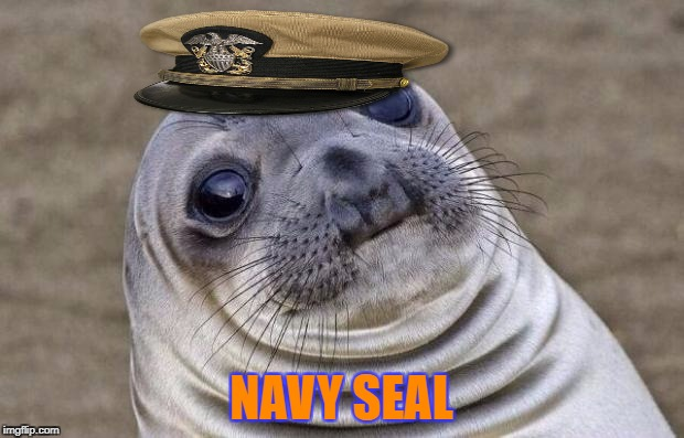 Navy Seal of Approval | NAVY SEAL | image tagged in memes,awkward moment sealion,navy seals,navy,military week,chad- | made w/ Imgflip meme maker