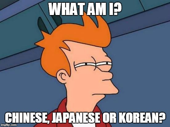 Racist meme |  WHAT AM I? CHINESE, JAPANESE OR KOREAN? | image tagged in racist,racism,chinese,japanese,korean,futurama fry | made w/ Imgflip meme maker