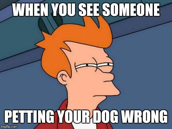 Futurama Fry Meme | WHEN YOU SEE SOMEONE PETTING YOUR DOG WRONG | image tagged in memes,futurama fry | made w/ Imgflip meme maker