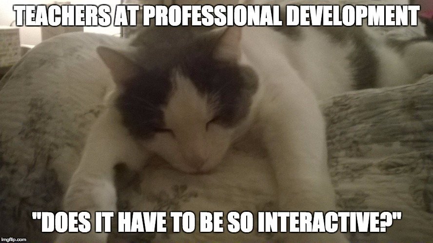 "TEACHERS AT PROFESSIONAL DEVELOPMENT ""DOES IT HAVE TO BE SO INTERACTIVE?"" 