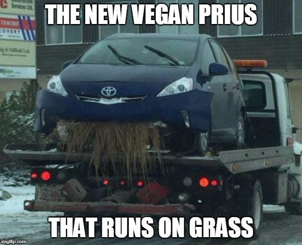 was a cow in a past life | THE NEW VEGAN PRIUS THAT RUNS ON GRASS | image tagged in hungry car,grass | made w/ Imgflip meme maker