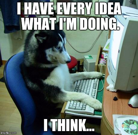 I Have No Idea What I Am Doing Meme | I HAVE EVERY IDEA WHAT I'M DOING. I THINK... | image tagged in memes,i have no idea what i am doing | made w/ Imgflip meme maker
