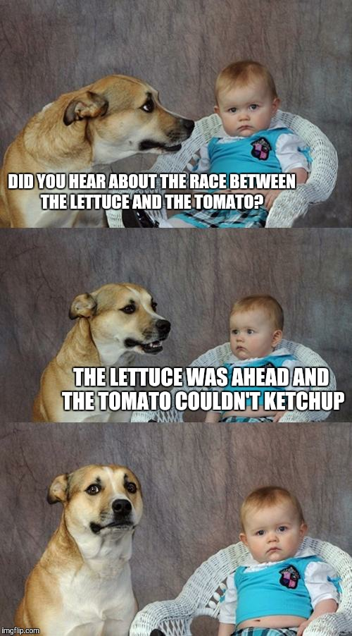 Dad Joke Dog Meme | DID YOU HEAR ABOUT THE RACE BETWEEN THE LETTUCE AND THE TOMATO? THE LETTUCE WAS AHEAD AND THE TOMATO COULDN'T KETCHUP | image tagged in memes,dad joke dog | made w/ Imgflip meme maker