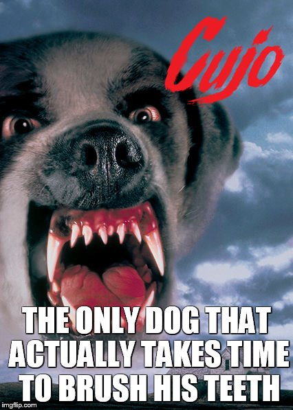 THE ONLY DOG THAT ACTUALLY TAKES TIME TO BRUSH HIS TEETH | image tagged in stephen king,dogs,evil,horror movie,books | made w/ Imgflip meme maker