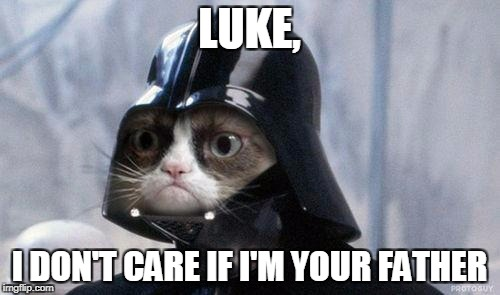Grumpy Cat Star Wars Meme | LUKE, I DON'T CARE IF I'M YOUR FATHER | image tagged in memes,grumpy cat star wars,grumpy cat | made w/ Imgflip meme maker