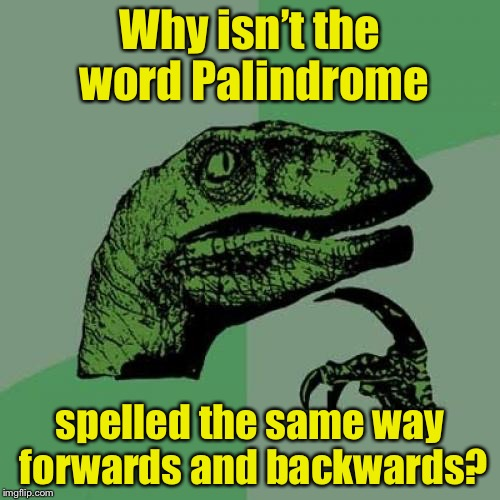 Philosoraptor Meme | Why isn't the word Palindrome spelled the same way forwards and backwards? | image tagged in memes,philosoraptor | made w/ Imgflip meme maker