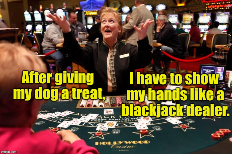 Canine treat verification rules | After giving my dog a treat, I have to show my hands like a blackjack dealer. | image tagged in memes,blackjack dealer,show hands,dog treat,canine rules | made w/ Imgflip meme maker