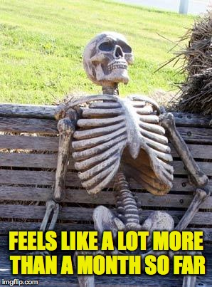 Waiting Skeleton Meme | FEELS LIKE A LOT MORE THAN A MONTH SO FAR | image tagged in memes,waiting skeleton | made w/ Imgflip meme maker