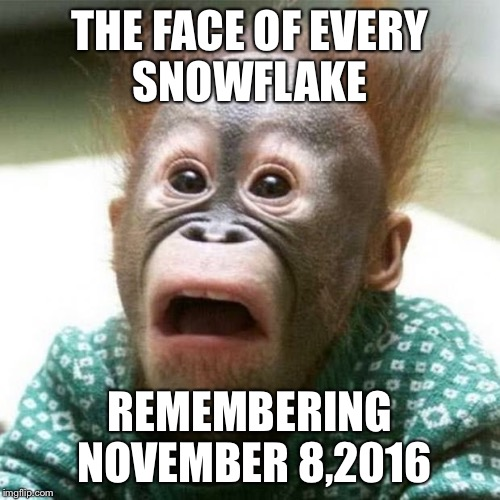 Shocked Snowflakes  | THE FACE OF EVERY SNOWFLAKE REMEMBERING NOVEMBER 8,2016 | image tagged in shocked monkey | made w/ Imgflip meme maker