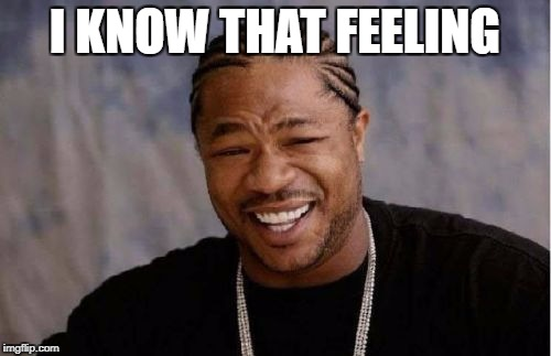 Yo Dawg Heard You Meme | I KNOW THAT FEELING | image tagged in memes,yo dawg heard you | made w/ Imgflip meme maker